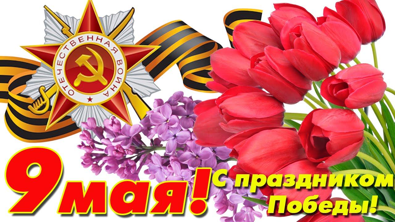 этом с праздником победы открытки красные сих